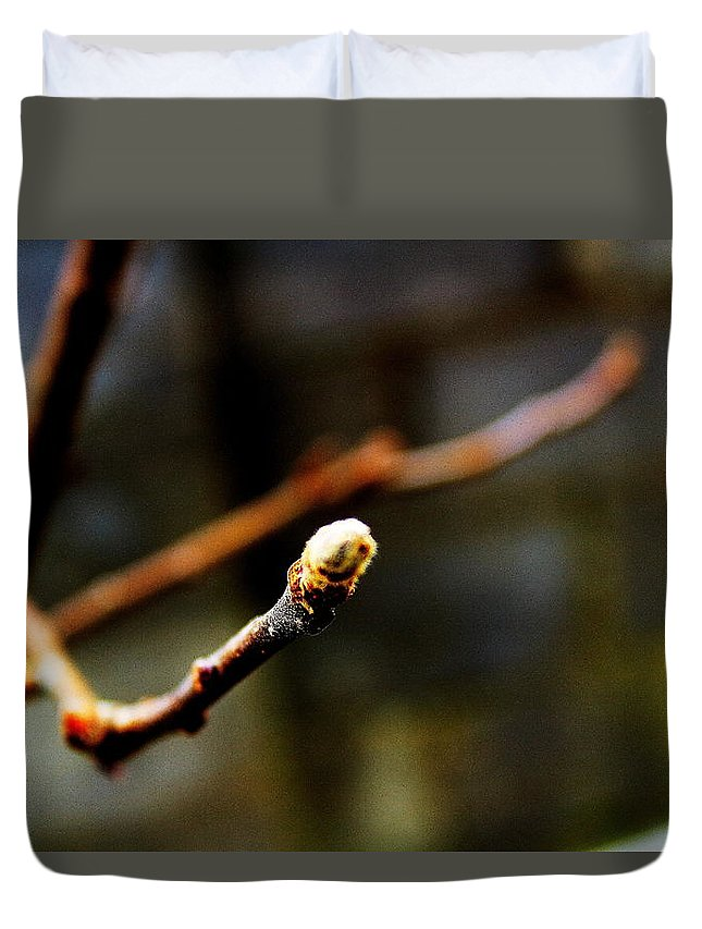 Bud Duvet Cover featuring the photograph Apple Tree Bud by Alireza Khoddam