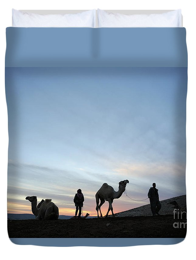 Middle East Duvet Cover featuring the photograph Arabian Camel At Sunset by PhotoStock-Israel