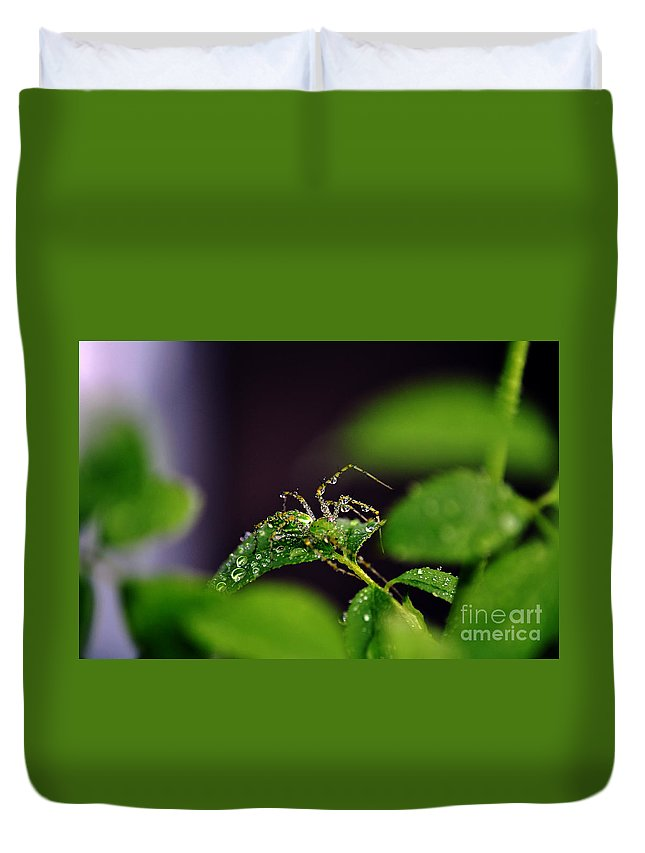 Clay Duvet Cover featuring the photograph Arachnishower by Clayton Bruster