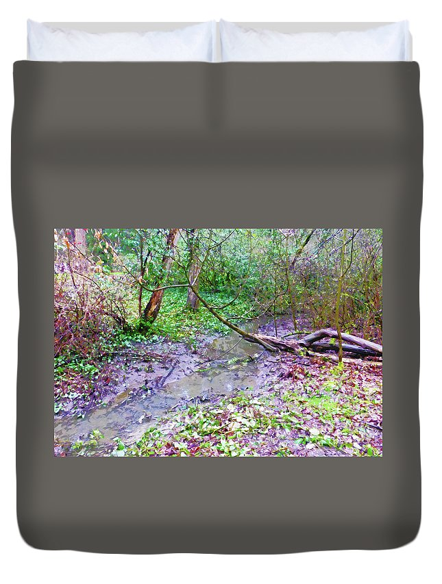 Creek Duvet Cover featuring the photograph Arboretum Creek Painted by As the Dinosaur Flies Photography