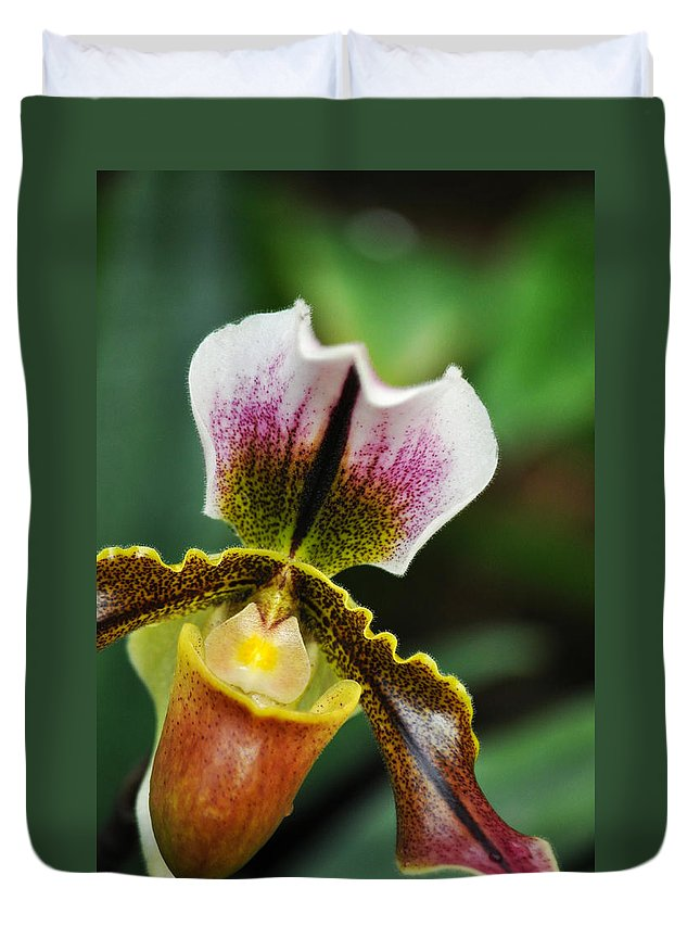 Los Angeles County Arboretum Duvet Cover featuring the photograph Arboretum Tropical House Orchid II by Kyle Hanson