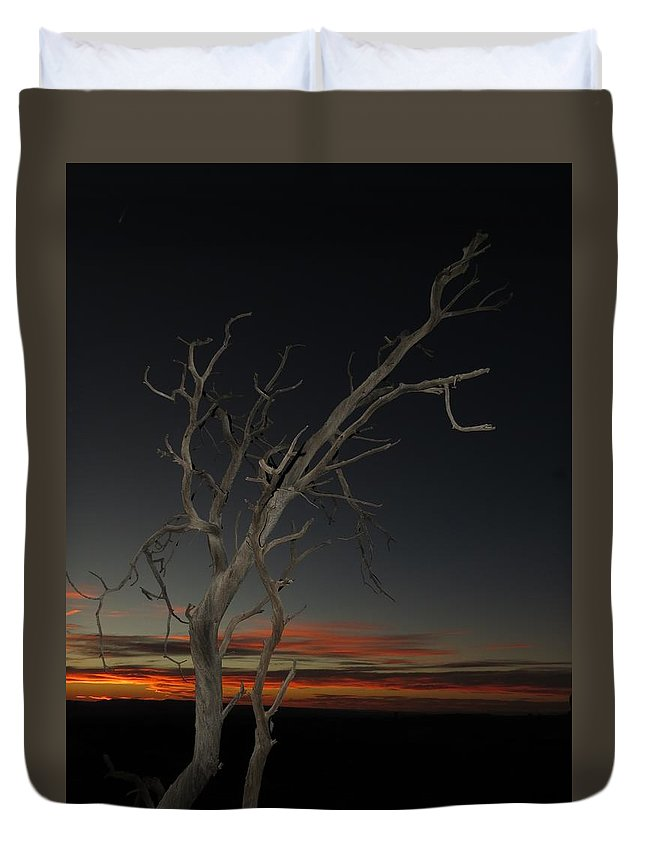 Duvet Cover featuring the photograph Arches Lone Tree At Dusk by Zach Rockvam