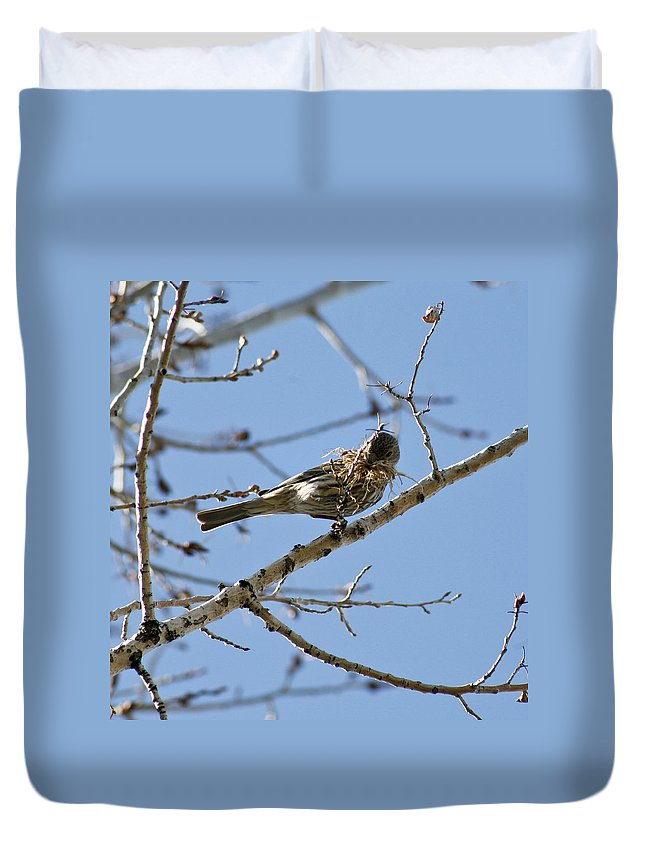 Bird Duvet Cover featuring the photograph Architect by Marilyn Hunt