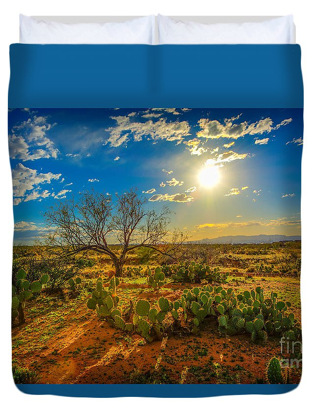 Sunset Duvet Cover featuring the photograph Arizona Sunset 28 by Larry White