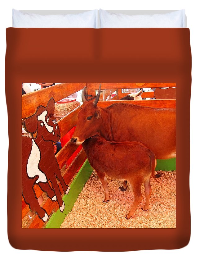 Cow Duvet Cover featuring the photograph Art Critic by Ian MacDonald