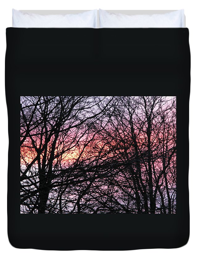 Winter Trees Duvet Cover featuring the photograph Art Inspired Nature by Maria Joy