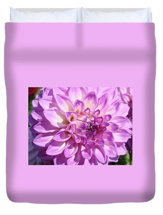 Dahlia Duvet Cover featuring the photograph Art Prints Dahlia Flower Decorative Art Garden Baslee by Baslee Troutman