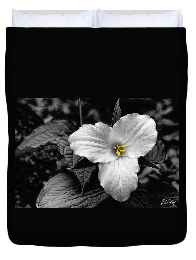 Artistic Effect Duvet Cover featuring the photograph Artistic Trillium by Phill Doherty