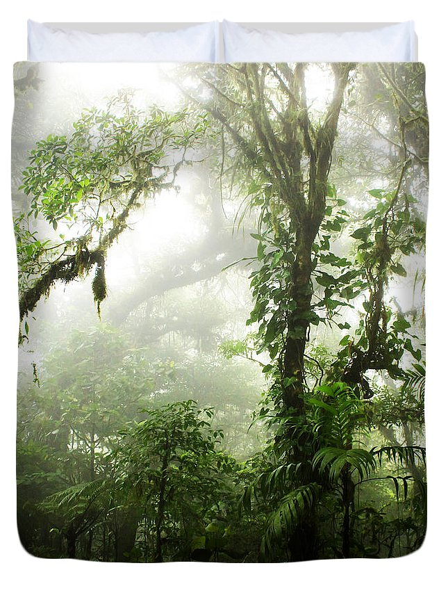 Forest Duvet Cover featuring the photograph Cloud Forest by Nicklas Gustafsson
