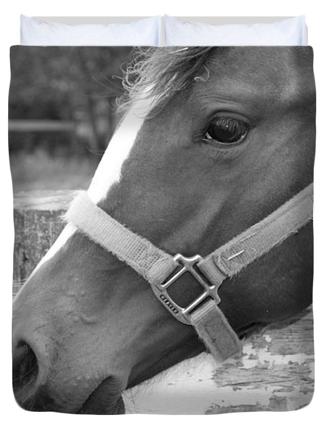 Horse Duvet Cover featuring the photograph Horse Face by Carrie Gallop