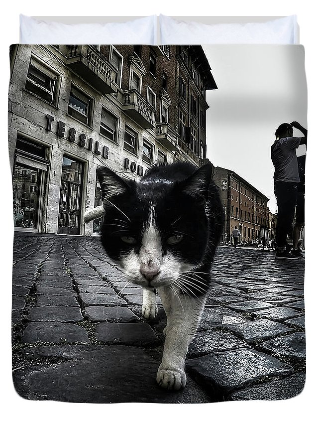 Cat Duvet Cover featuring the photograph Street Cat by Nicklas Gustafsson