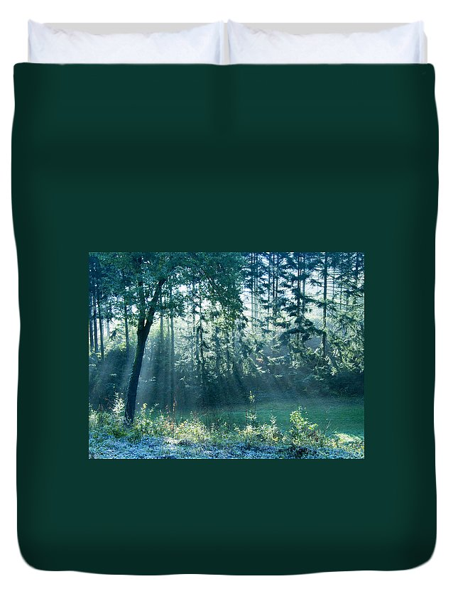 Magical Duvet Cover featuring the photograph Ashenvale Forest by Daniel Csoka