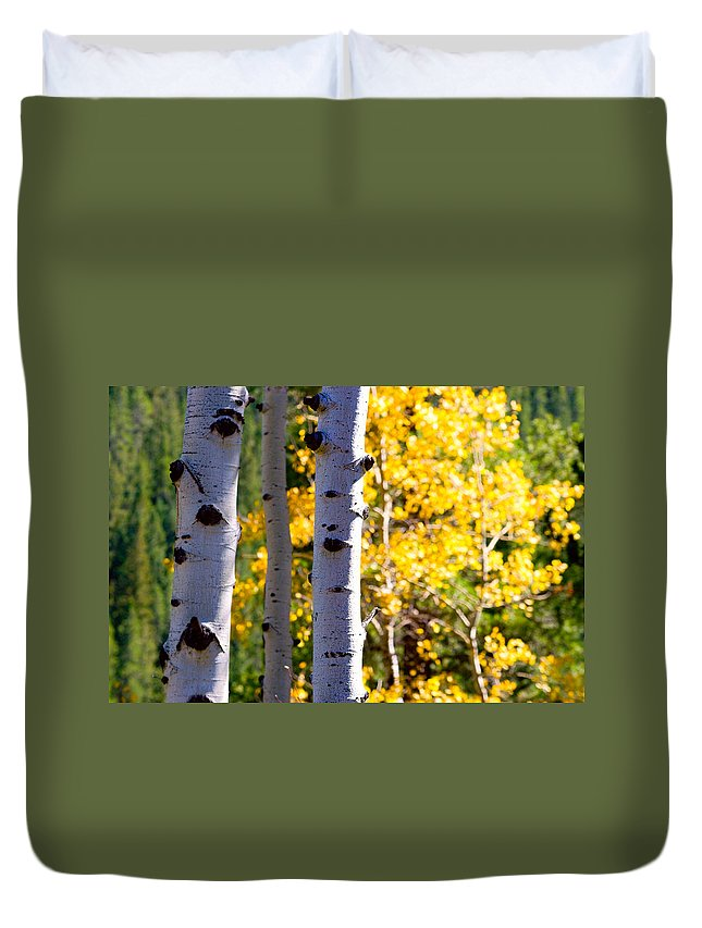 Aspens Duvet Cover featuring the photograph Aspen Color by James BO Insogna
