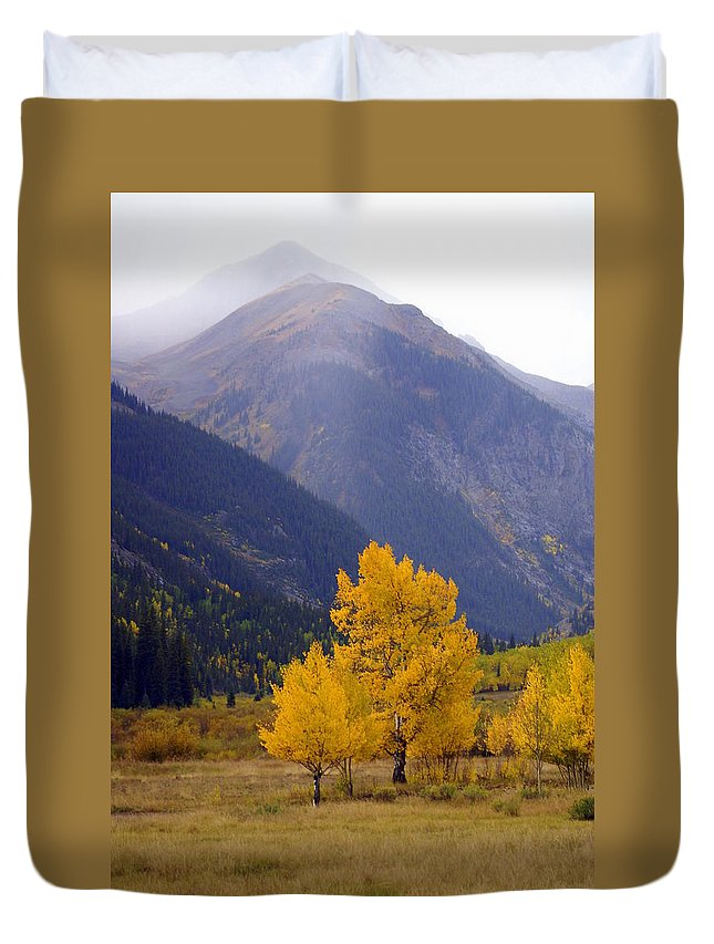 Fall Colors Duvet Cover featuring the photograph Aspen Fall 4 by Marty Koch