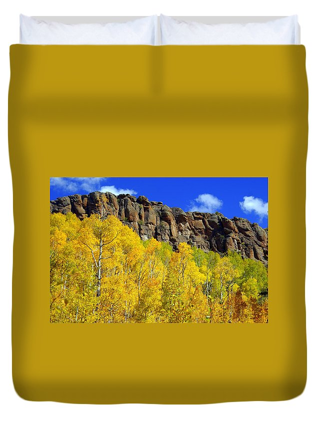 Fall Colors Duvet Cover featuring the photograph Aspen Glory by Marty Koch