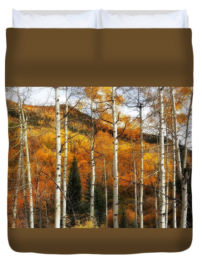 Aspen Glow Duvet Cover featuring the photograph Aspen Glow by LeAnne Perry