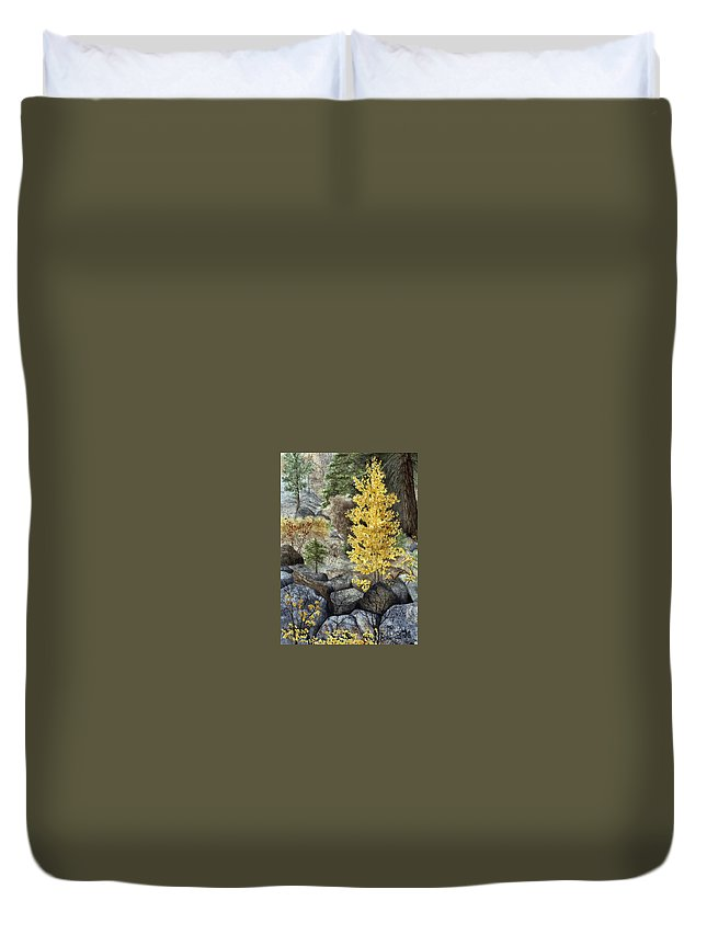 Autumn Duvet Cover featuring the painting Aspen Gold by Mary Tuomi