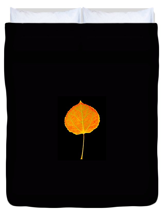 Leaf Duvet Cover featuring the photograph Aspen Leaf by Marilyn Hunt