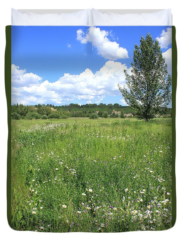 Flowers Duvet Cover featuring the photograph Aspen Tree In Meadow With Wild Flowers by Jim Sauchyn