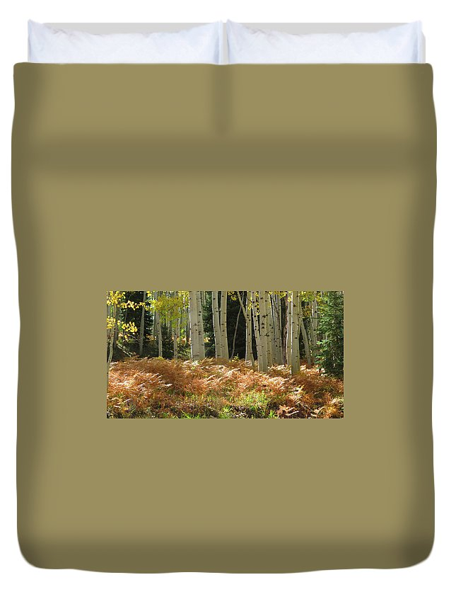 Kebler Pass Duvet Cover featuring the photograph Aspens And Ferns by Carol Milisen
