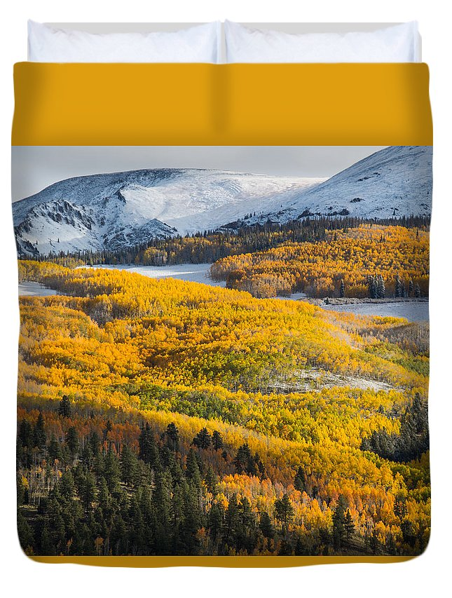 Aspens Duvet Cover featuring the photograph Aspens And Mountains In The Morning Light by Mike Doty