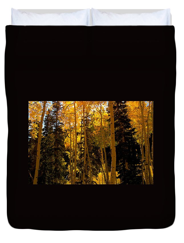 Aspen Trees Duvet Cover featuring the painting Aspens In Fall by David Lee Thompson