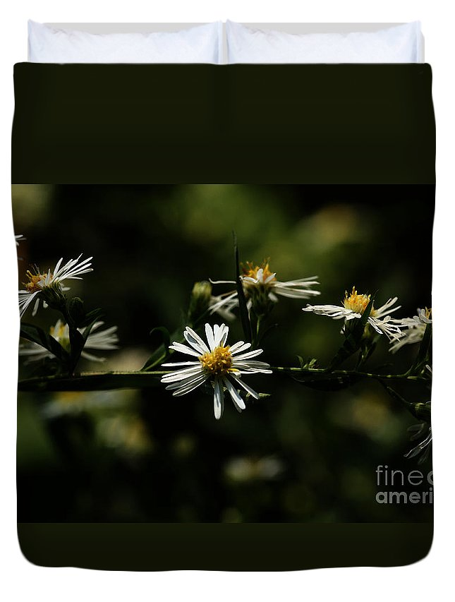 Aster Duvet Cover featuring the photograph Aster's Branch by Linda Shafer