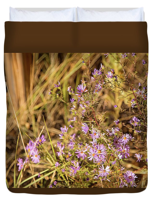 Aster Flowers Duvet Cover featuring the photograph Asters In Autumn by Kunal Mehra
