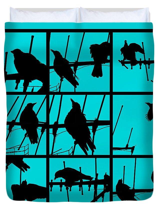 Birds Duvet Cover featuring the photograph Asylum by Andrew Paranavitana