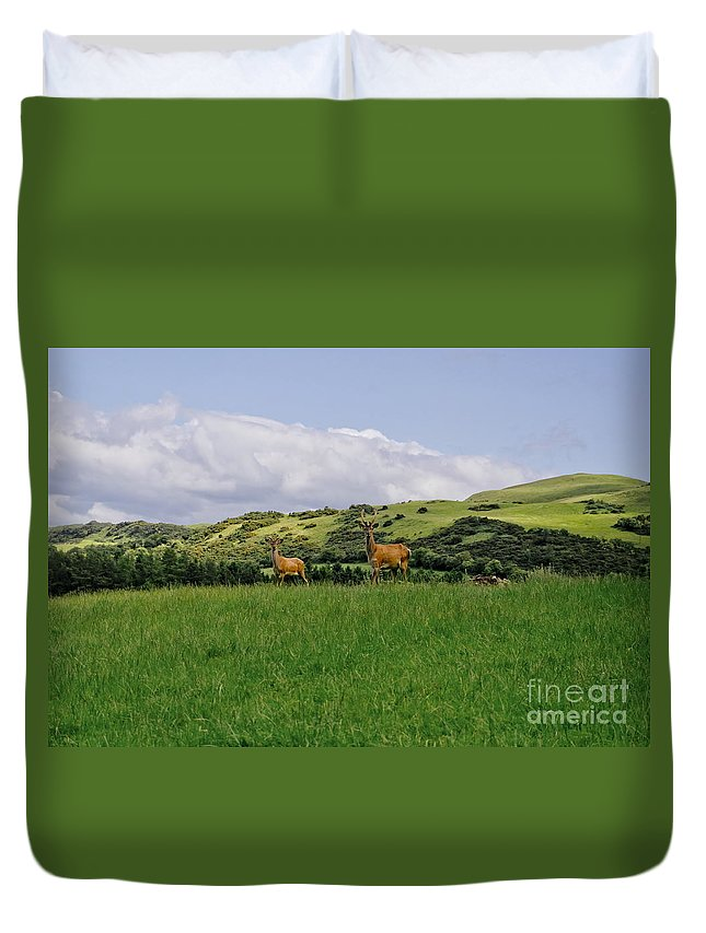 Beecraigs Duvet Cover featuring the photograph At The Hill Bottom. by Elena Perelman