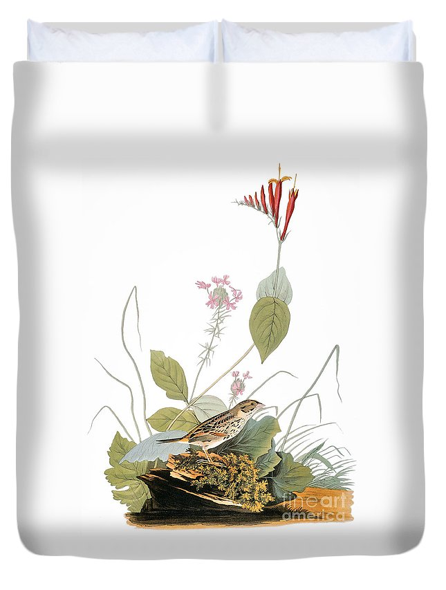 1838 Duvet Cover featuring the photograph Audubon: Bunting by Granger