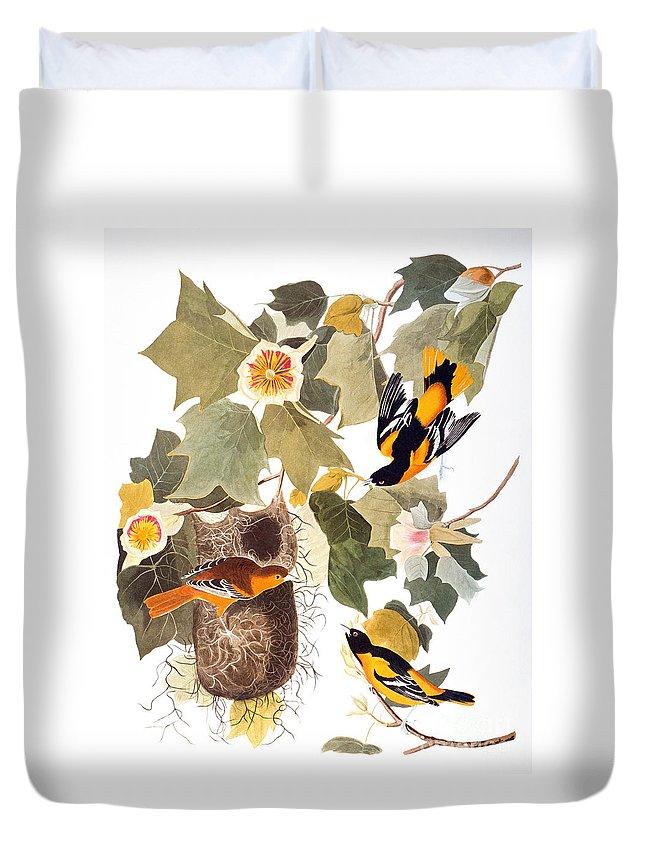 1838 Duvet Cover featuring the photograph Audubon: Oriole by Granger