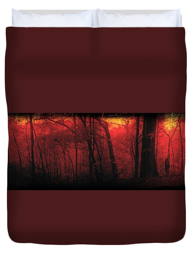 Woods Duvet Cover featuring the mixed media Autumn 2015 Panorama In The Woods Pa 06 by Thomas Woolworth