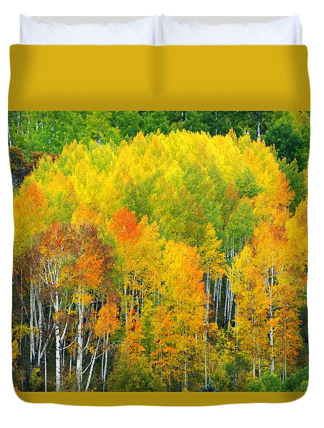 Horizontal Duvet Cover featuring the photograph Autumn Aspens by Eggers Photography
