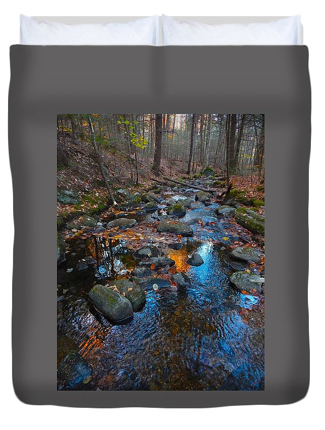 Autumn Landscape Duvet Cover featuring the photograph Autumn B 2015 111 by George Ramos
