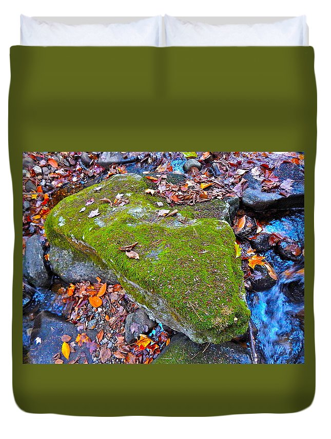 Autumn Landscape Duvet Cover featuring the photograph Autumn B 2015 115 by George Ramos