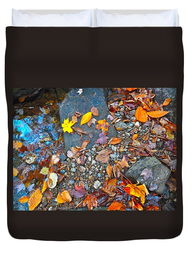 Autumn Landscape Duvet Cover featuring the photograph Autumn B 2015 116 by George Ramos
