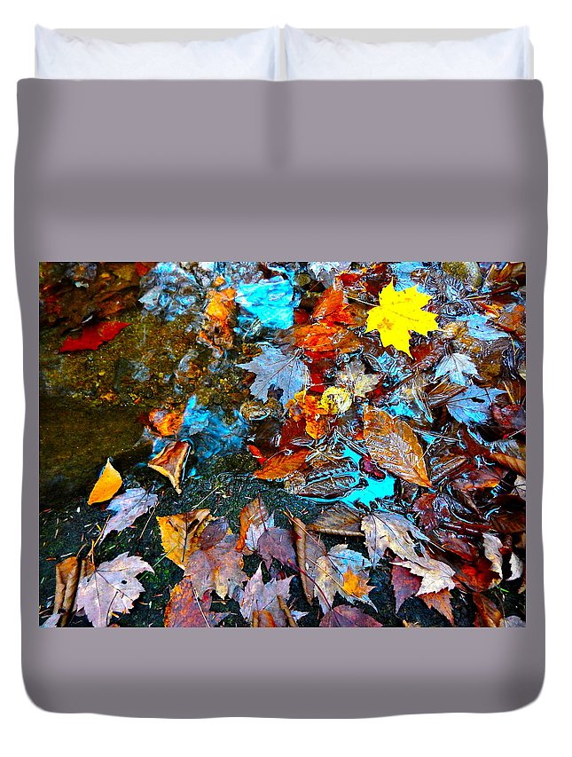 Autumn Landscape Duvet Cover featuring the photograph Autumn B 2015 124 by George Ramos
