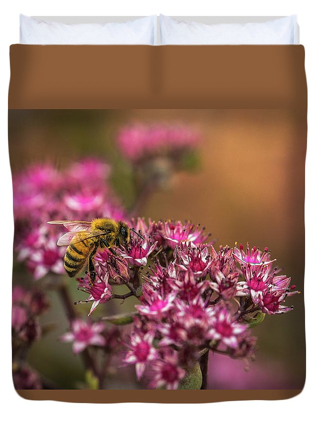 Bee Duvet Cover featuring the photograph Autumn Bee On Flowers by Yeates Photography