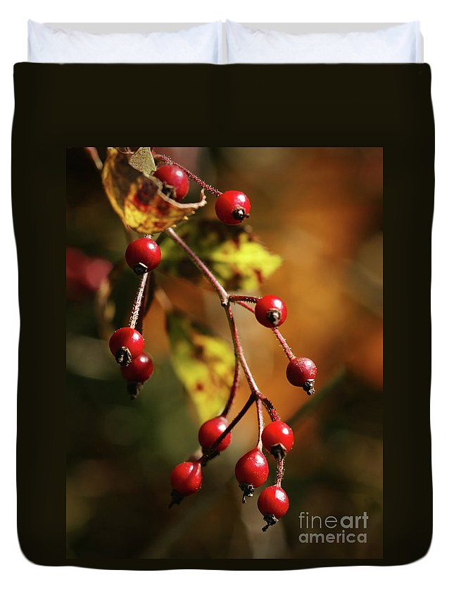 Berries Duvet Cover featuring the photograph Autumn Berries by Linda Shafer