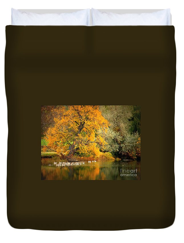 Fall Duvet Cover featuring the photograph Autumn Calm by Carol Groenen