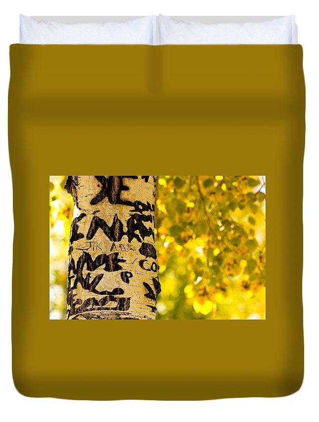Aspens Duvet Cover featuring the photograph Autumn Carvings by James BO Insogna