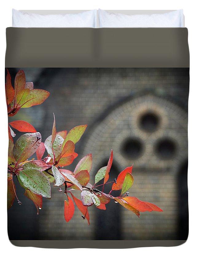 Autumn Duvet Cover featuring the photograph Autumn Colour by Graeme Mell
