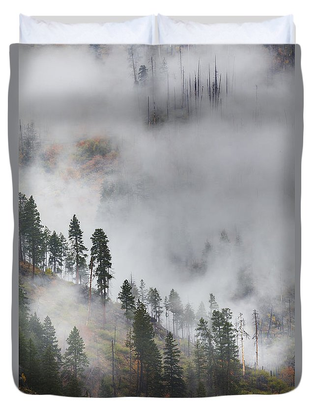 Autumn Duvet Cover featuring the photograph Autumn Fog by Eggers Photography