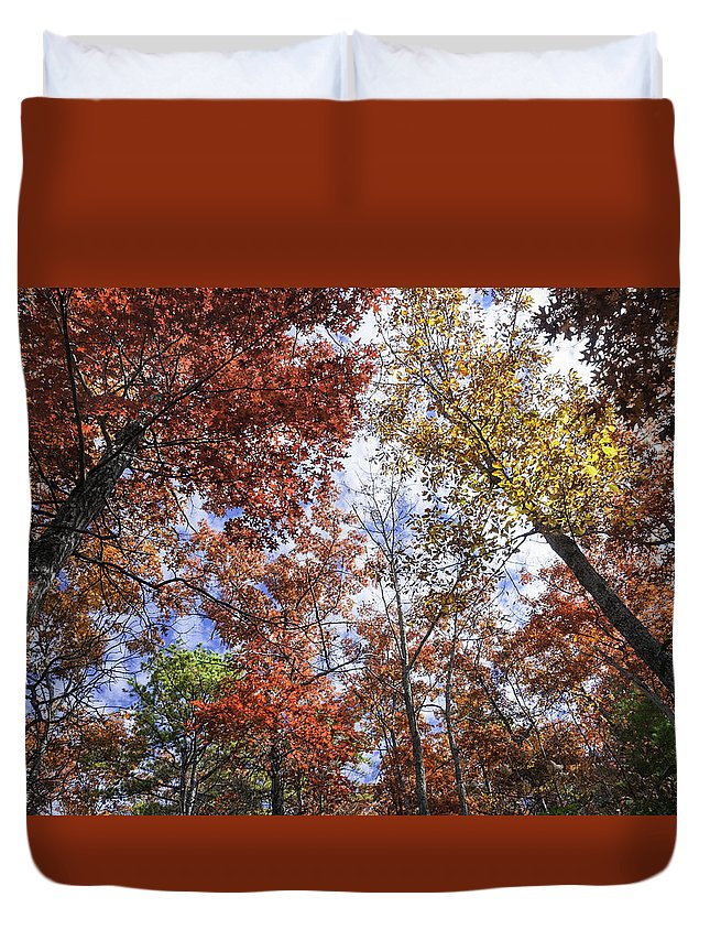 Fall Trees Duvet Cover featuring the photograph Autumn Forest Canopy by Lynn Bauer