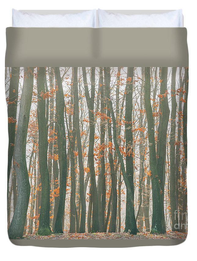 Landscape Duvet Cover featuring the photograph Autumn Forest by Jelena Jovanovic