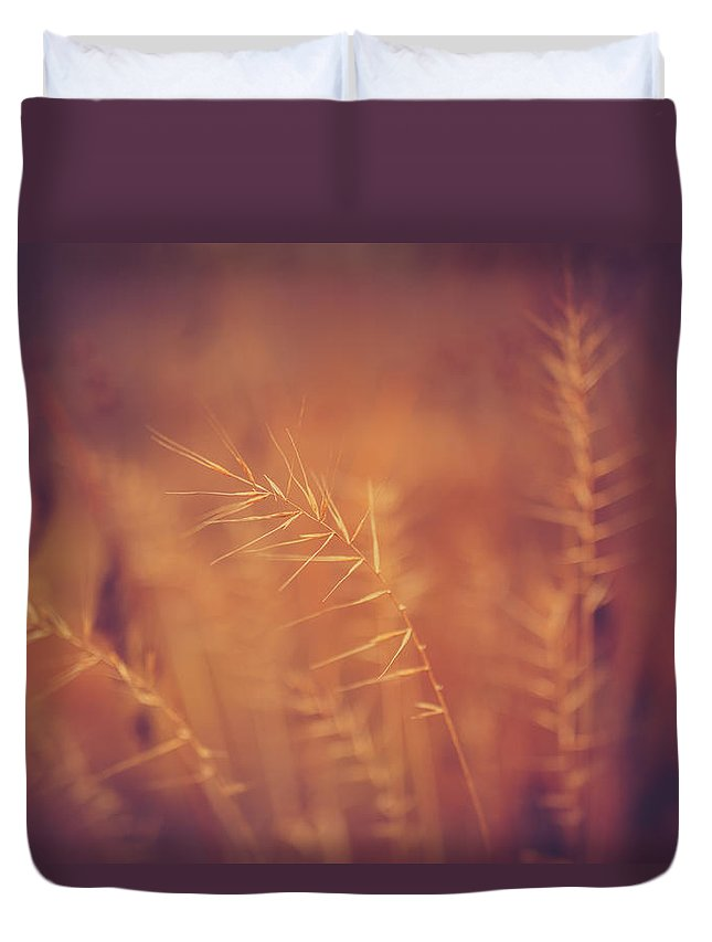 Autumn Duvet Cover featuring the photograph Autumn Grass by Shane Holsclaw