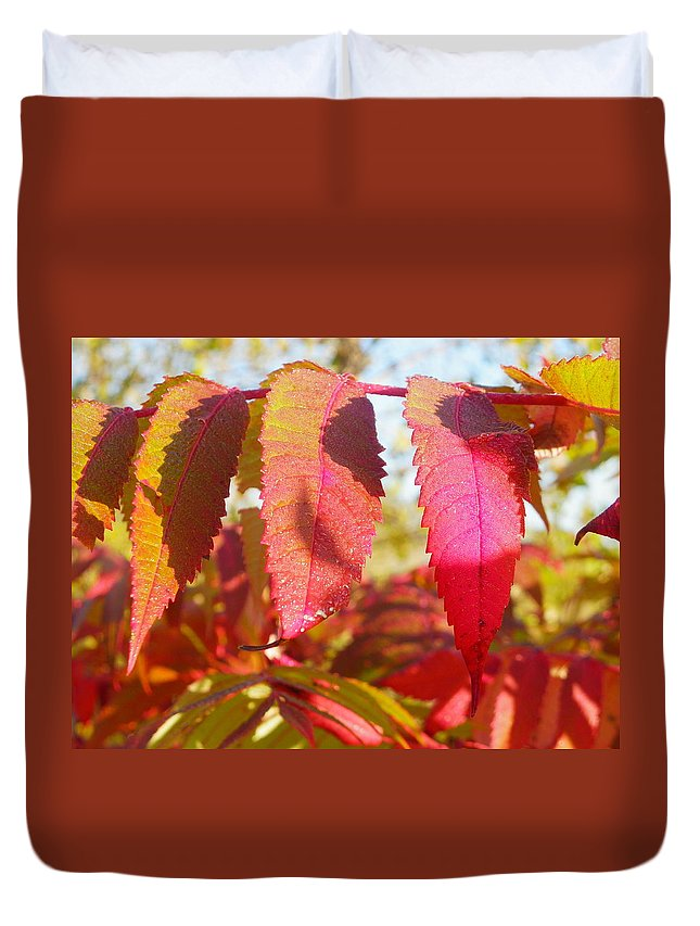 Nature Duvet Cover featuring the photograph Autumn Has Arrived by Peggy King