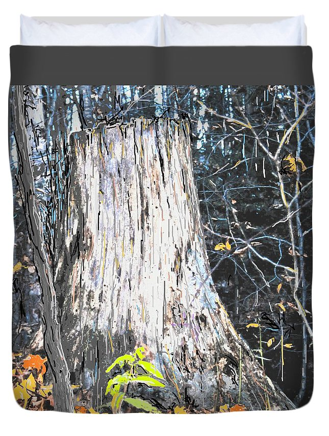 Fall Duvet Cover featuring the photograph Autumn by Ian MacDonald