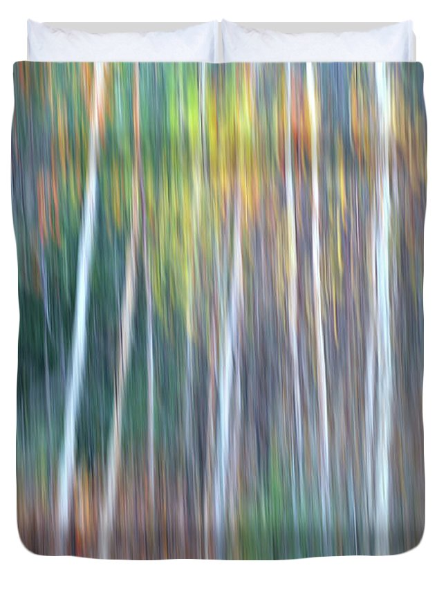 Forest Pastels Form An Autumn Impression Duvet Cover featuring the photograph Autumn Impression by Bill Morgenstern